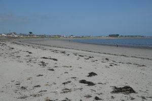 Cloughey beach
